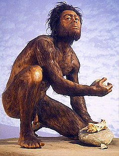the evidence of bipedal locomotion in early hominids Though australopith material offers a strong case for habitual bipedalism, earlier hominins dating as far back as 7 ma also provide exciting evidence for early bipedalism the oldest known hominin to show definitive bipedal adapations is the extinct species orrorin tugenensis that dates to 6 ma.