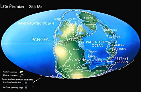 the end of the permian period Permian paleogeographydistribution of landmasses, mountainous regions,  shallow seas, and deep ocean basins near the end of the permian period  included.